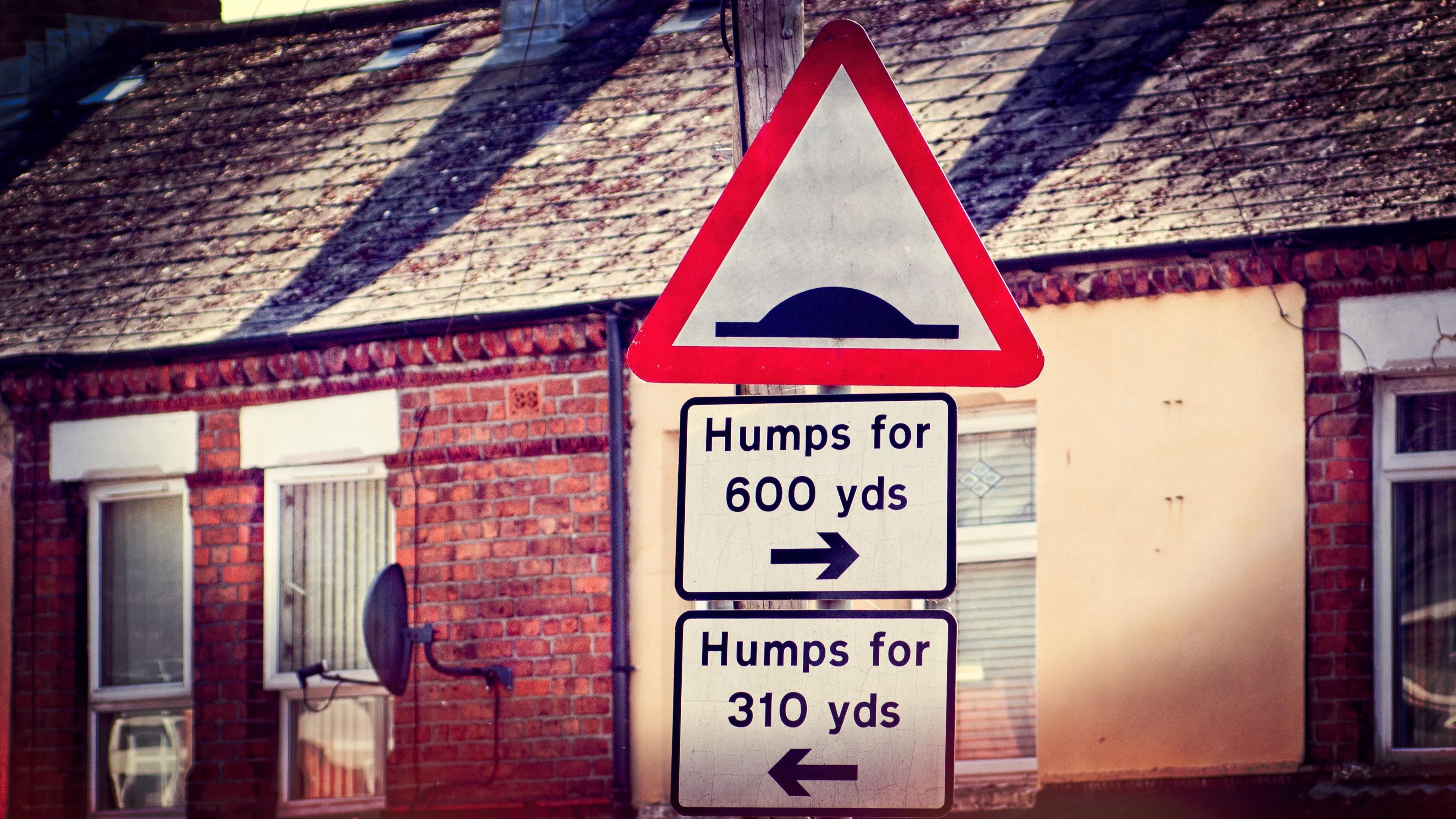 humps every which way