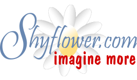 Shyflower.com logo with tag Imagine More