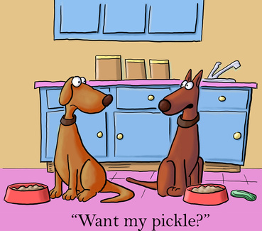 dogs sharing a pickle